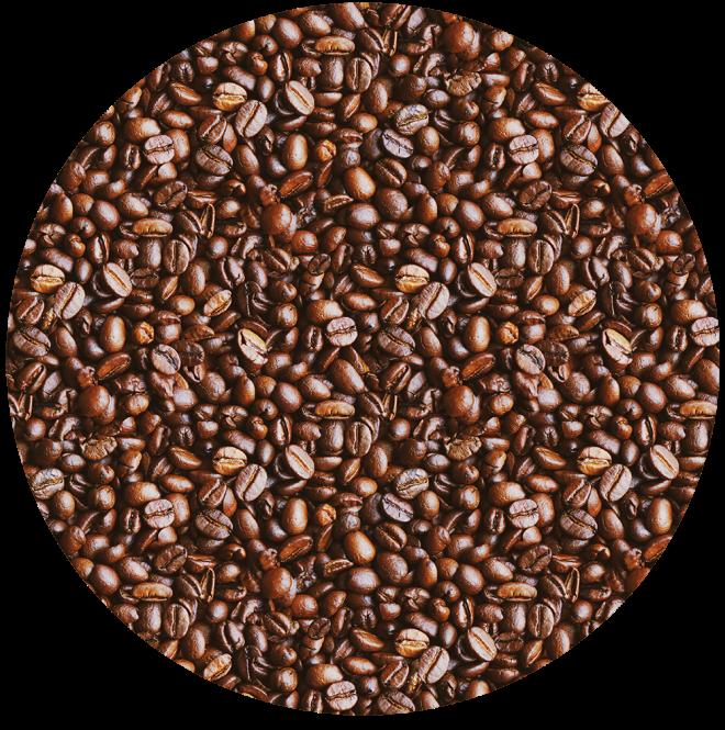 Brown Coffee Bean Photo Pattern