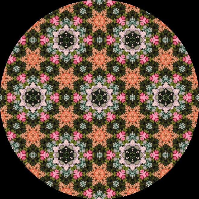 Orange Star Flower Patch Photo Kaleidoscope Pattern  By Patterns Soup