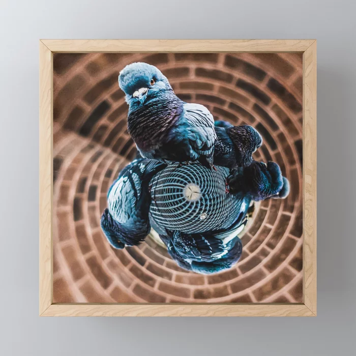 Pigeon Planet Framed Mini Art Print by lovefi