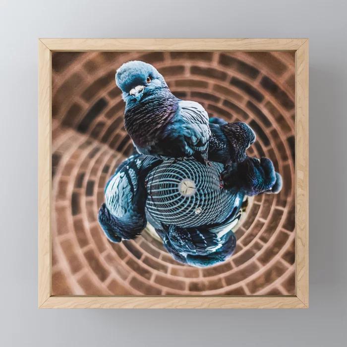 Pigeon Planet Framed Mini Art Print by lovefi