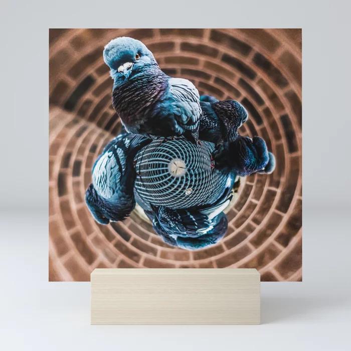 Pigeon Planet Mini Art Print by lovefi