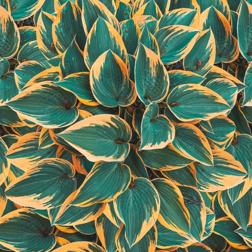 Plantain Lily, Foliage Pattern by Patterns Soup