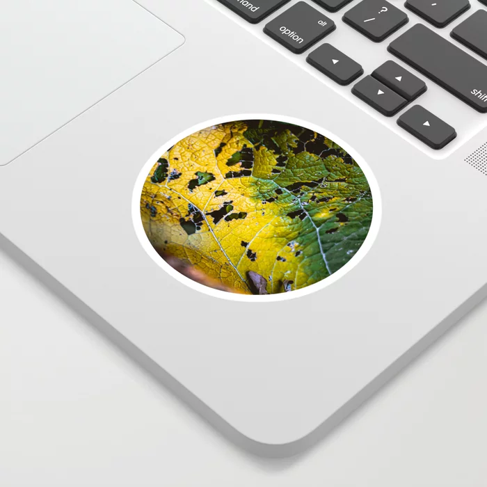 Green Leaf Consumption. Nature Photography Sticker by lovefi