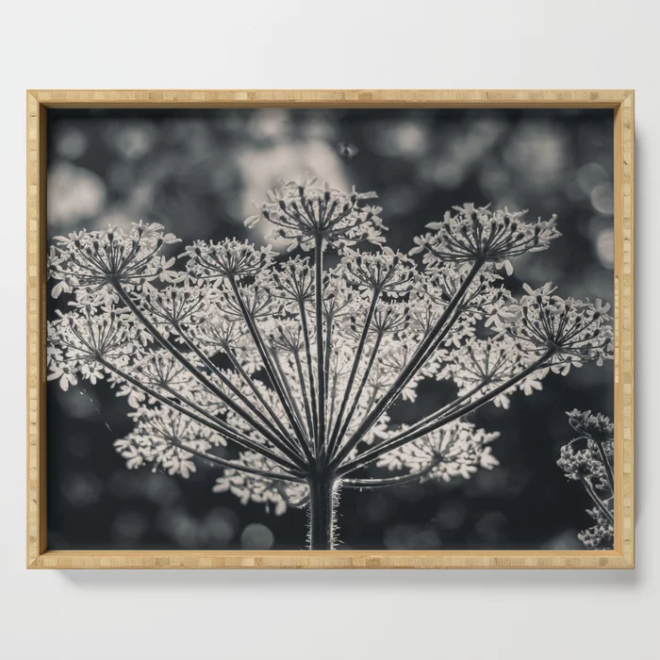 Forest's Crown. Nature Photography Serving Tray by lovefi