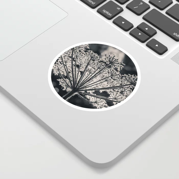Forest's Crown. Nature Photography Sticker by lovefi