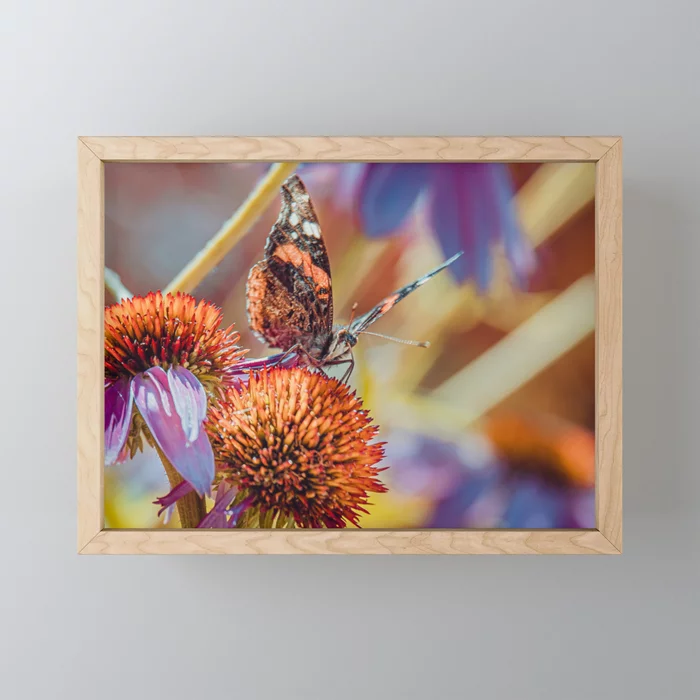 Landing Pad. Beautiful Butterfly Photograph Framed Mini Art Print by lovefi