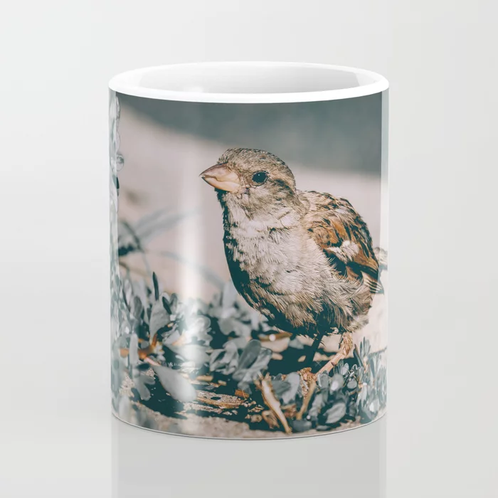 Summer Sparrow. Bird Photograph Coffee Mug by lovefi