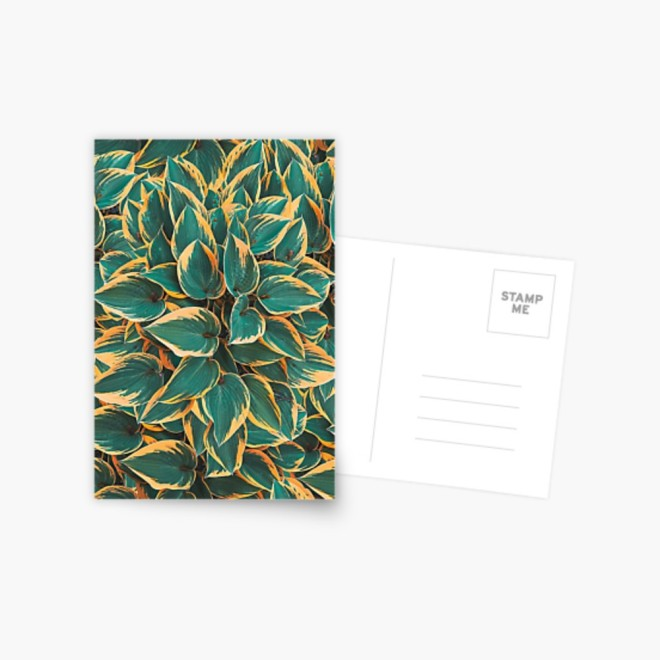 Plantain Lily Foliage Plant Pattern Postcard by PatternsSoup