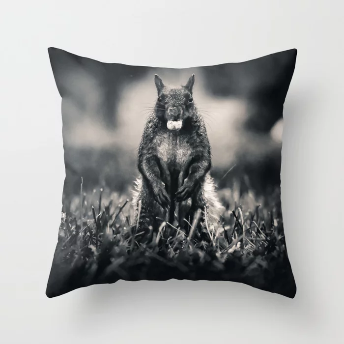 The Collector. Black and White Squirrel Photograph Throw Pillow by lovefi