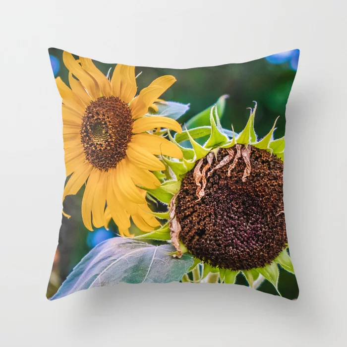 A Couple Of Sunflowers Photograph Throw Pillow by lovefi