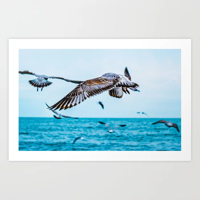 Flight Of The Flock Photograph Art Print by lovefi