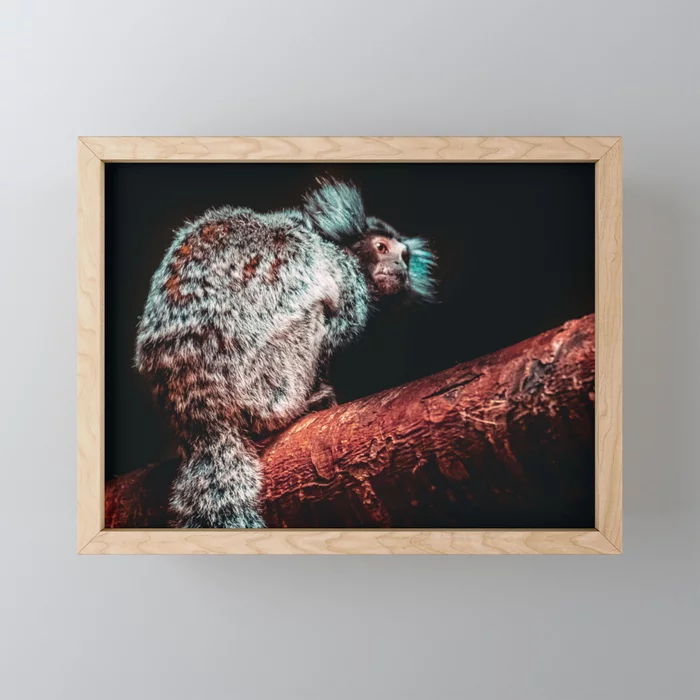Mischievous Marmoset II Photograph Framed Mini Art Print by lovefi