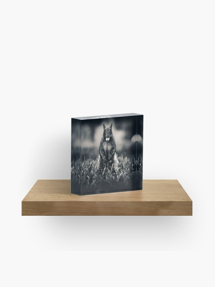 The Collector. Photograph Acrylic Block on Redbubble by lovefi