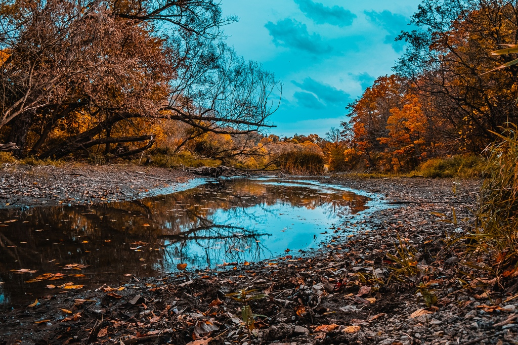 Autumn Creek. By Stephen Geisel, Love-fi