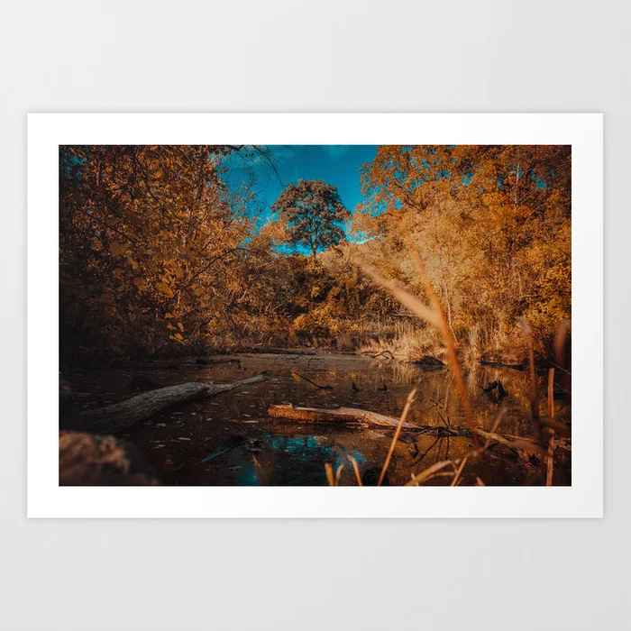 Quiet Creek II. Landscape Photography Art Print by lovefi