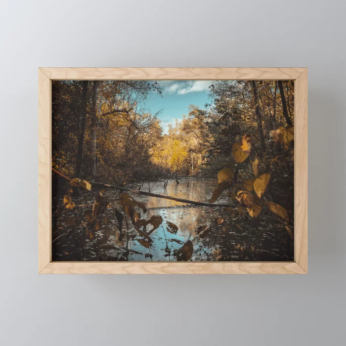 Quiet Creek. Photograph Framed Mini Art Print by lovefi