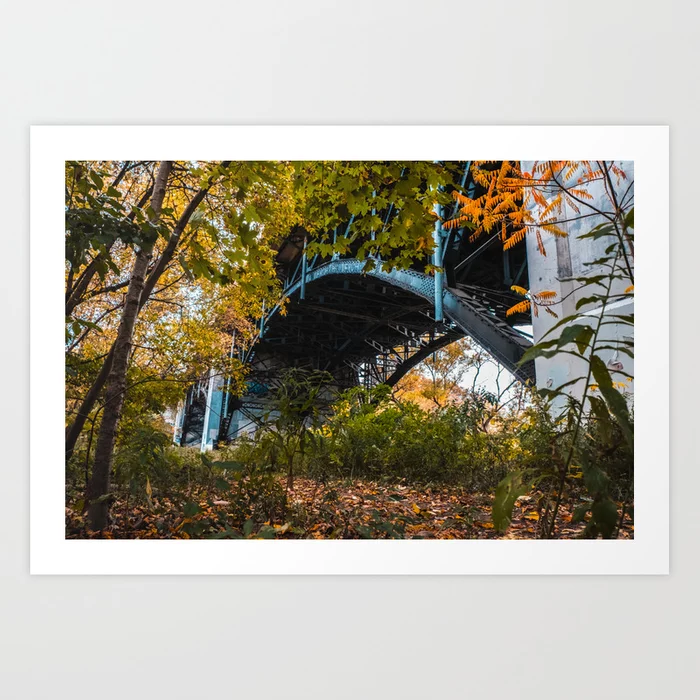 Reclaimed Bridge Photograph Art Print by lovefi