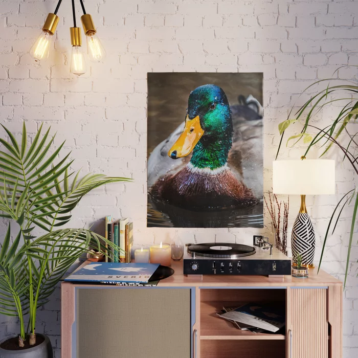 Mr.Mallard Photograph Poster by lovefi
