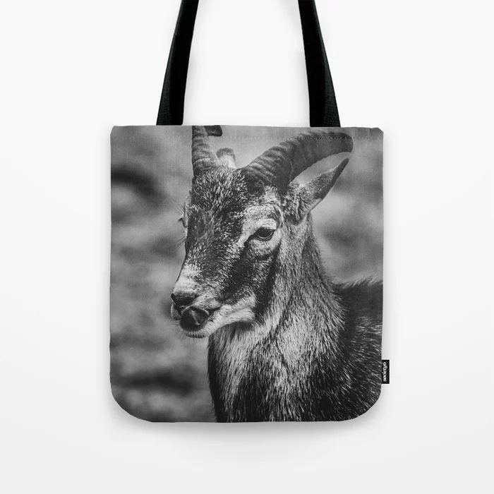 Mouflon Sheep. Black and White Photograph Tote Bag by lovefi