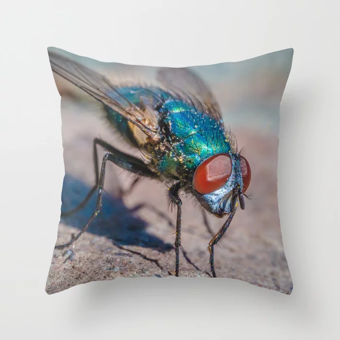 Macro Fly Photograph Throw Pillow by lovefi