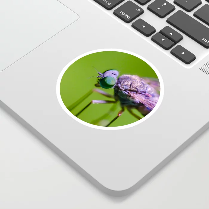 Little Green Eye'd Fly. Sticker. On Society6